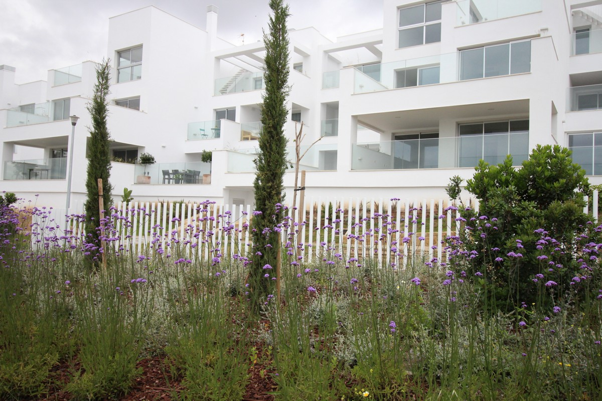 Apartments for sale in Los Flamingos Golf Resort